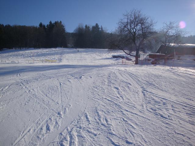 Grand bois; Megève Mont d'arbois Dsc00582-9608a7