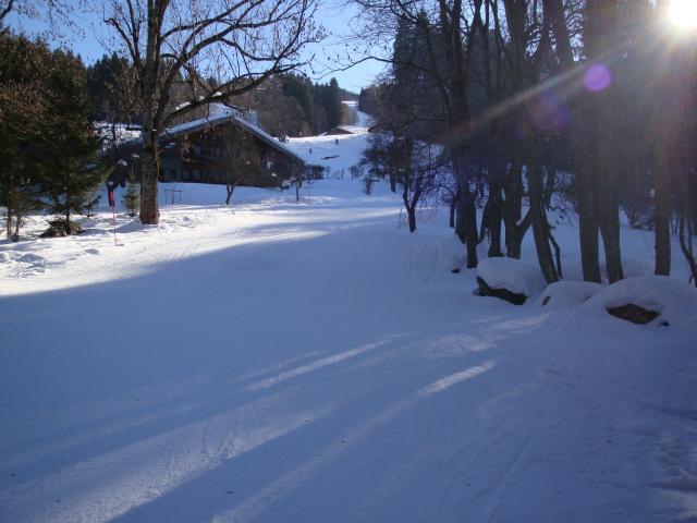 Grand bois; Megève Mont d'arbois Dsc00579-960843