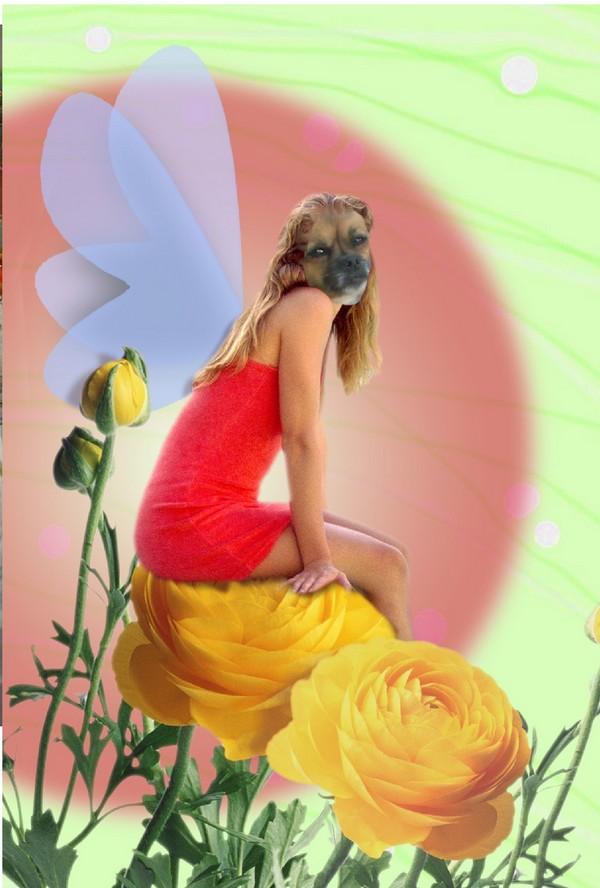 fleur-corps-humain-tete-de-chien-humour-flora