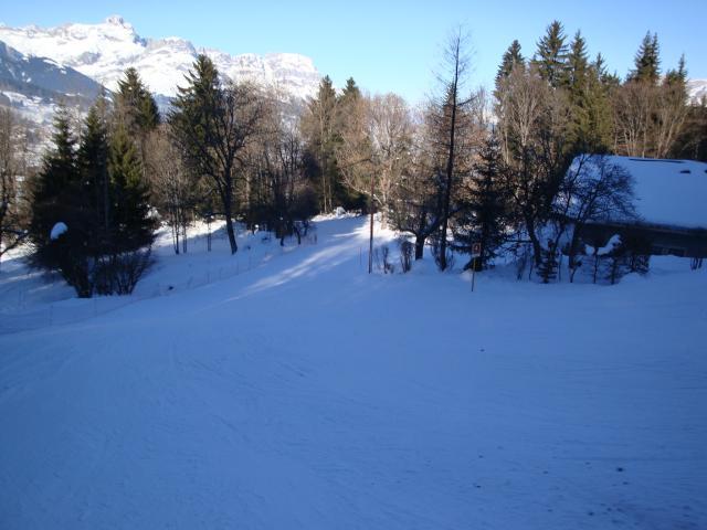 Grand bois; Megève Mont d'arbois Dsc00577-960823