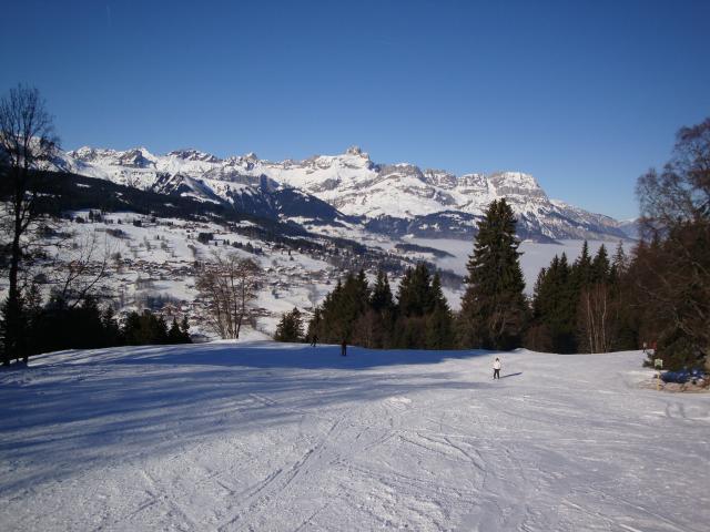 Grand bois; Megève Mont d'arbois Dsc00571-96072f