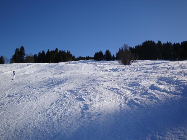 Grand bois; Megève Mont d'arbois Dsc00568-9606c7